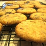 Orange and Dark Chocolate Cookies, FTW!